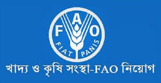 Food and Agriculture Organization FAO Job Circular